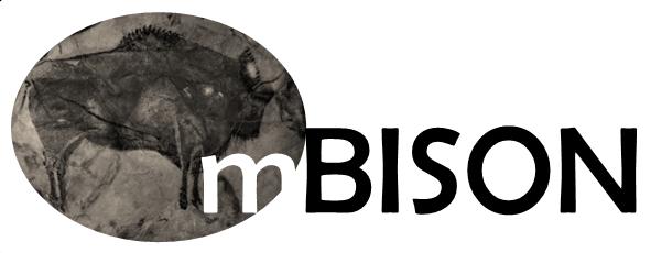 m-BISON